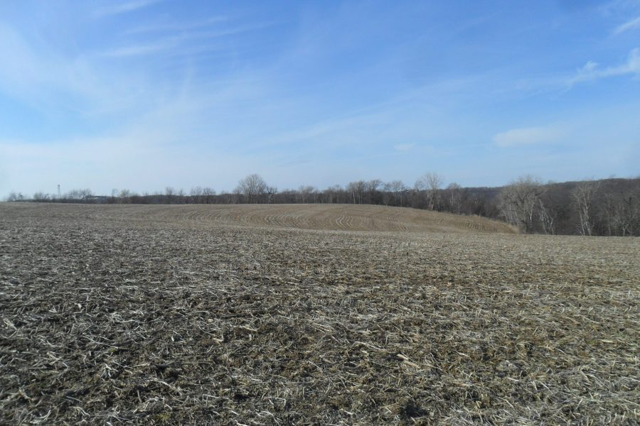 45+/- Acres Winona County, MN