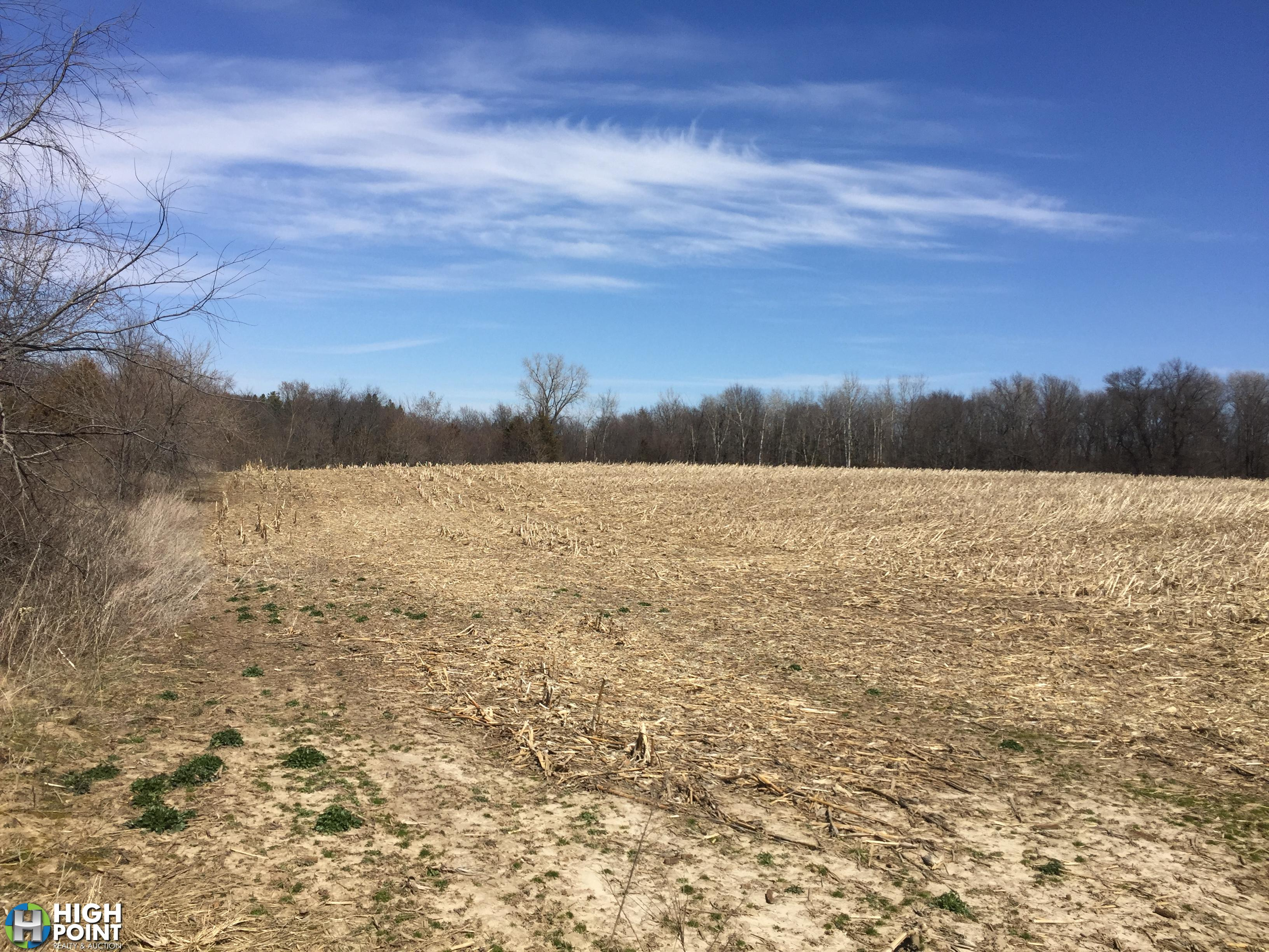 50+/-Acres Olmsted County, MN