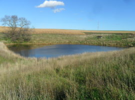 288 +/- Acres in Winona County, MN (AUCTION)
