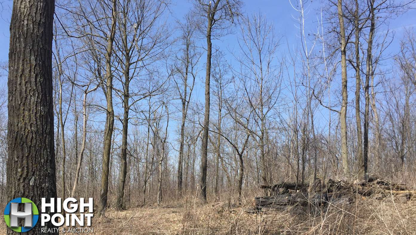 20 +/- Acres Fillmore County, MN