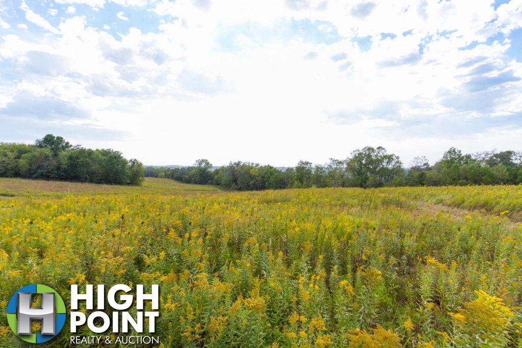 Gorgeous-Prairie-and-Woods-1500x1000-72dpi-1024x683
