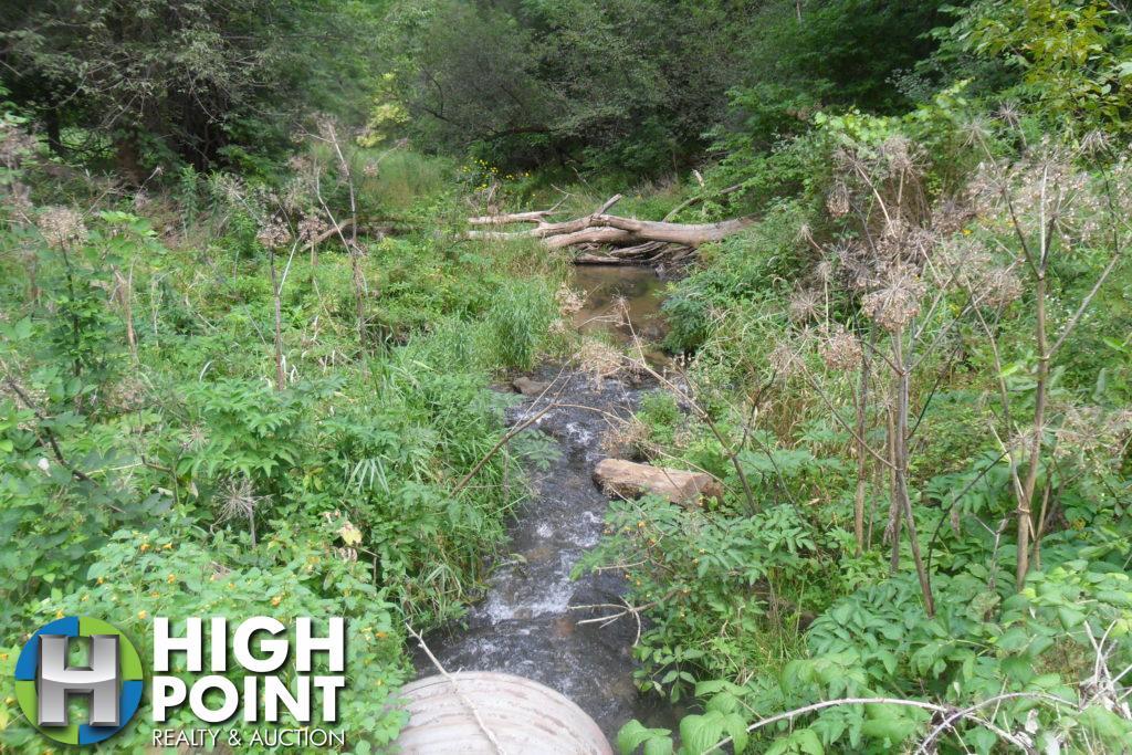 Creek-1024x683