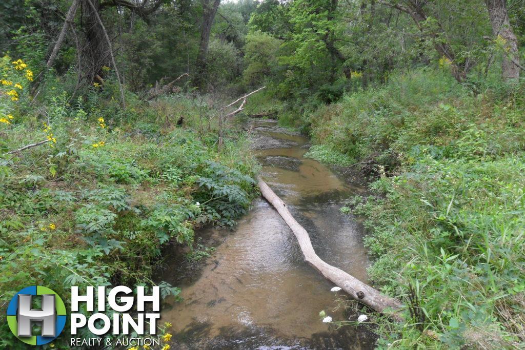 Creek-2-1024x683