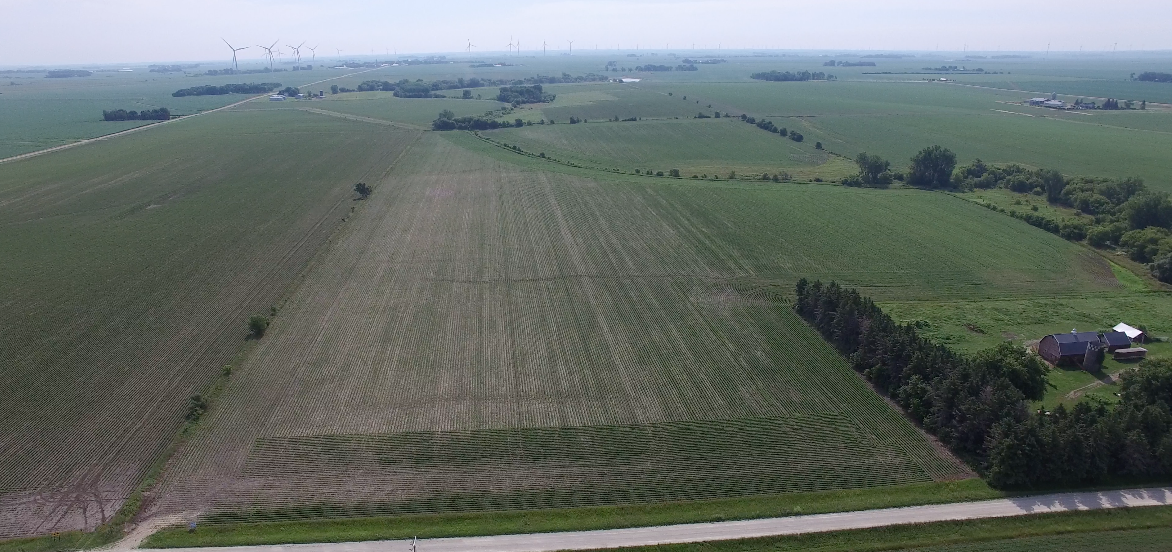 114 +/- Acres Mower County, MN