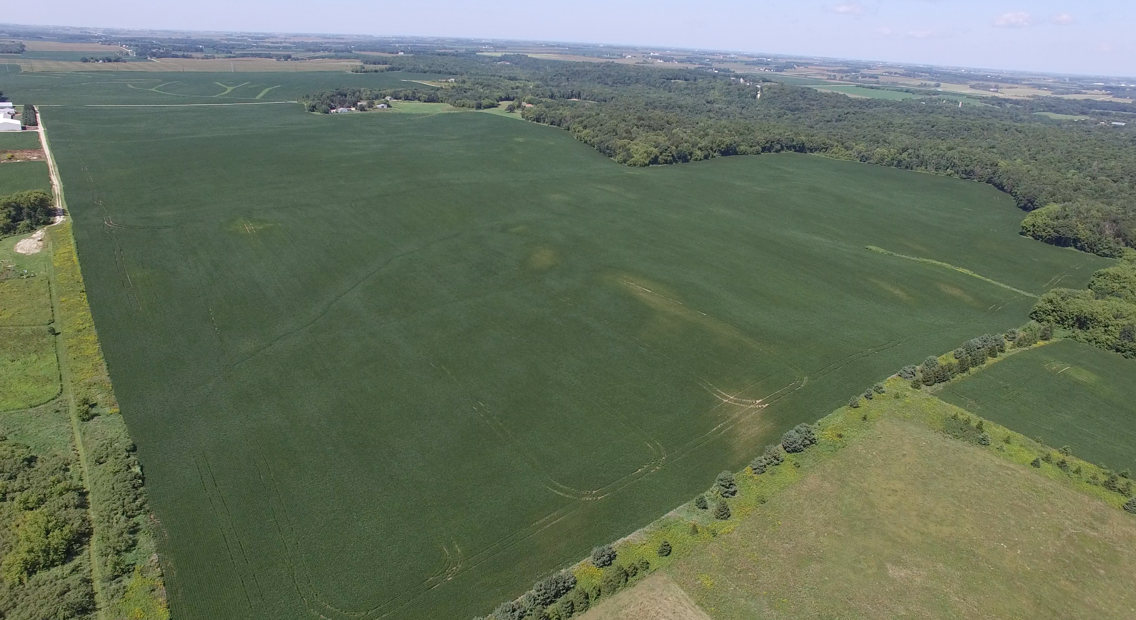 175 +/- Acres Olmsted County, MN