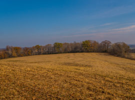 38.5+/- Acres Monroe County, WI