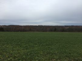 24+/- Acres Fillmore County, MN