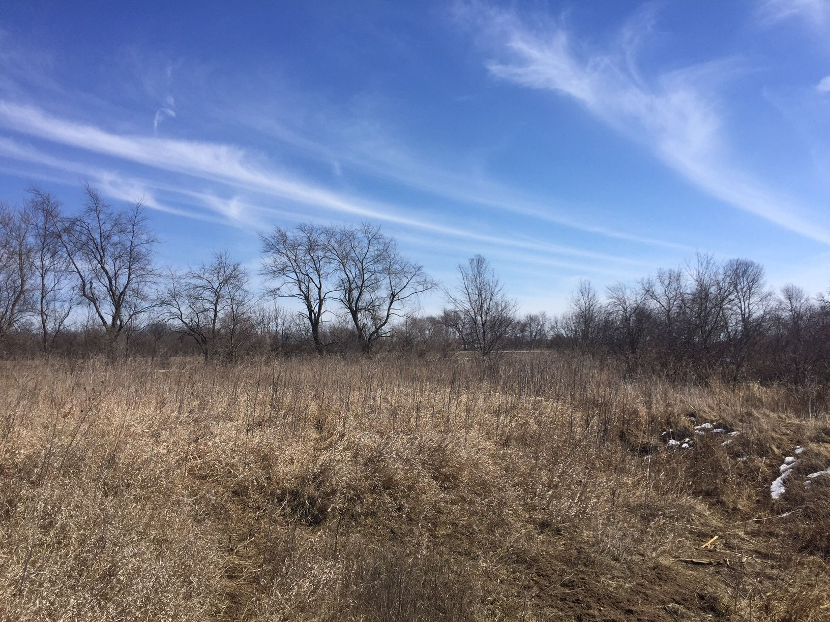 48 +/- Acres Howard County, IA