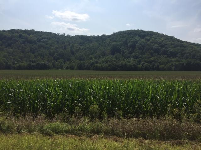 194.2+/- Acres Wabasha County, MN