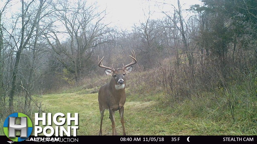 92.11 +/- Acres Clayton County, IA