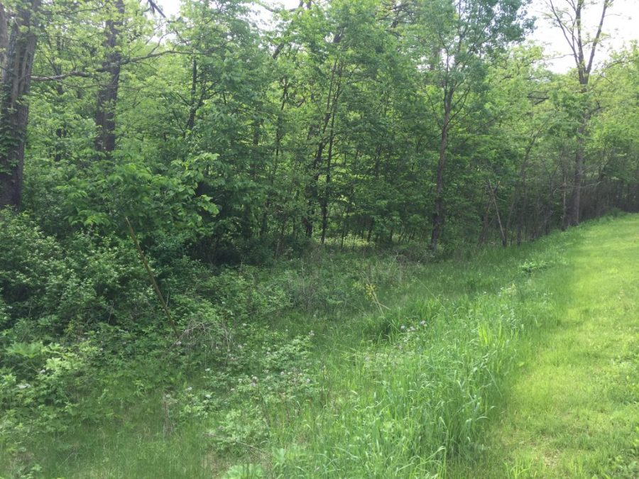 7.27+/- Acres Wabasha County, MN