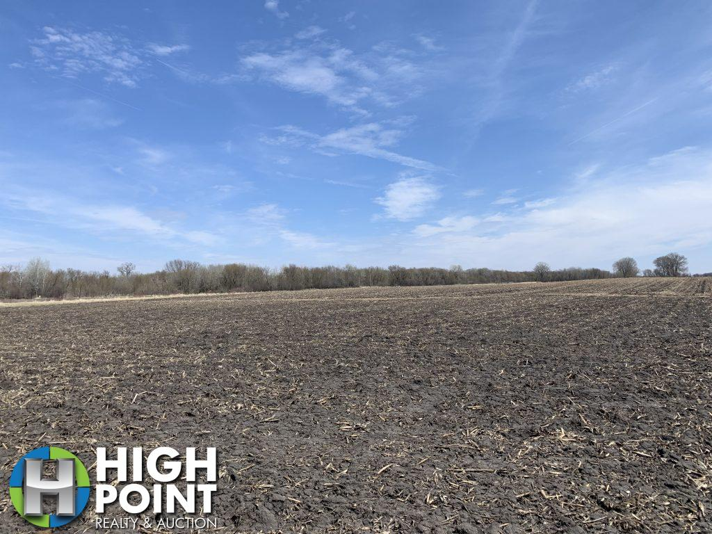40+/- Acres Steele County, MN