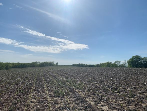 212+/- Acres Grant County, WI