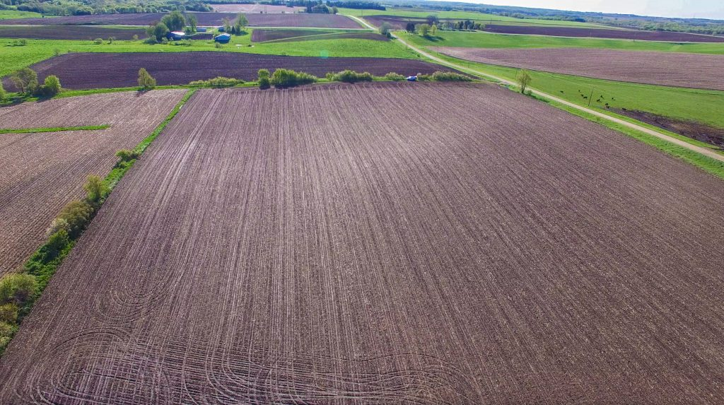 81.33+/- Acres Olmsted County, MN