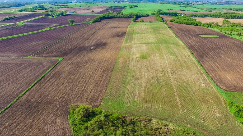 100+/- Acres Olmsted County, MN