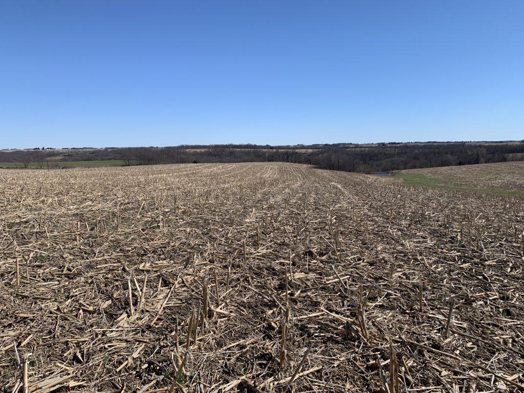 158+/- Acres Allamakee County, IA