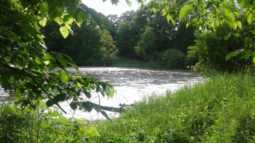 62.9+/- Acres Lafayette County, WI