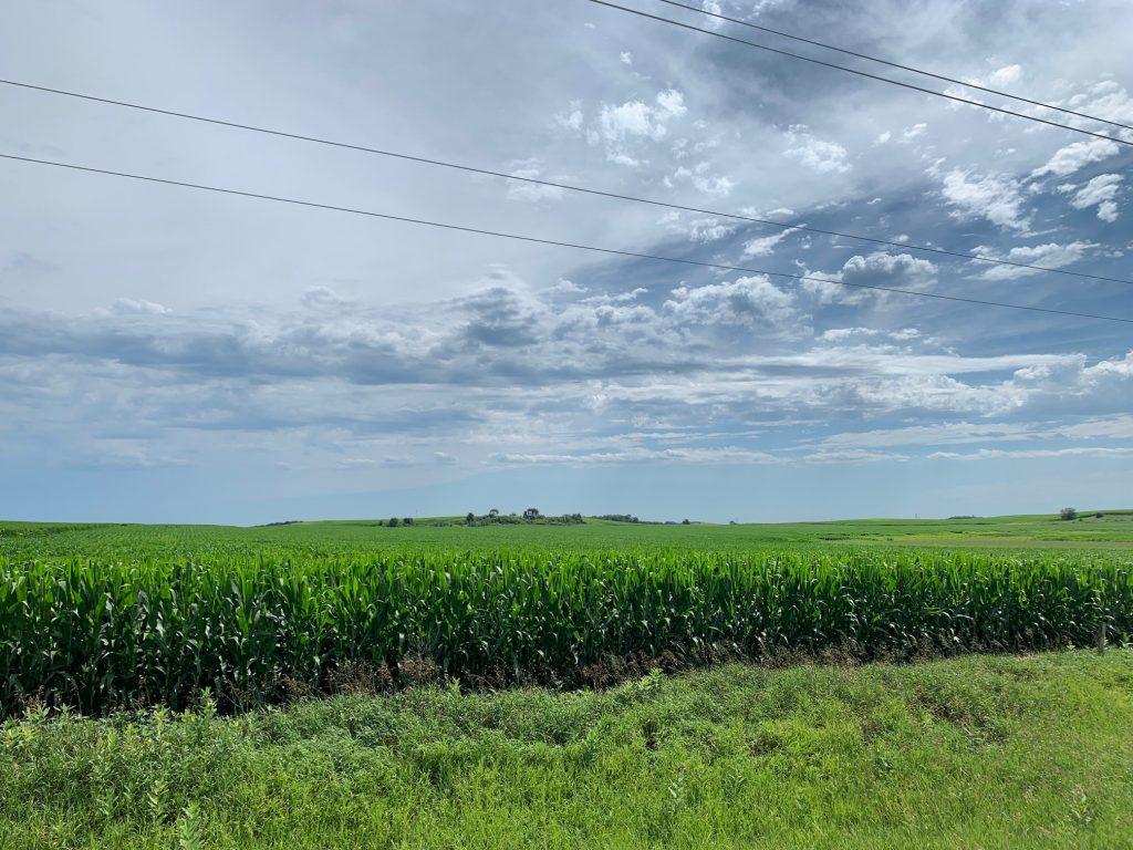 150+/- Acres Cerro Gordo County, IA