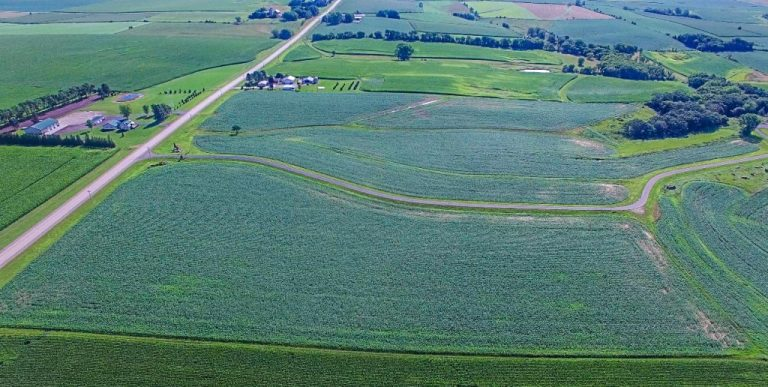70+/- Acres Olmsted County, MN