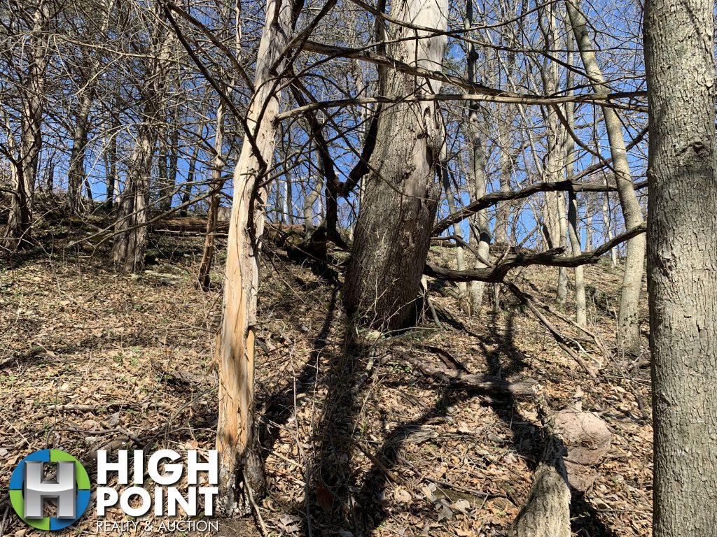 Photo-Apr-19-3-54-46-PM