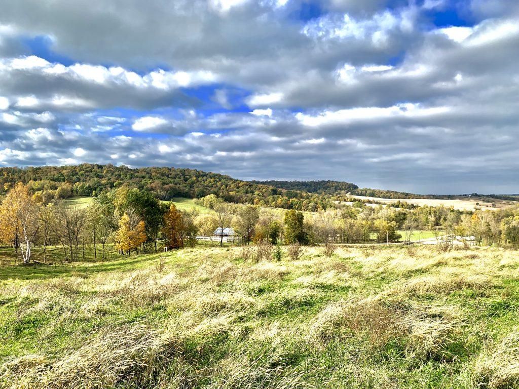 30+/- Acres Clayton County, IA
