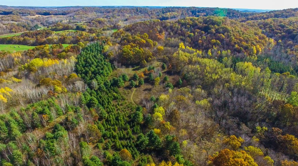 60+/- Acres Trempealeau County, WI