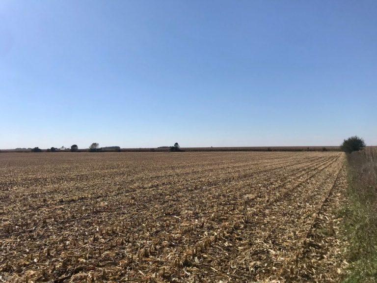 65+/- Acres Floyd County, IA