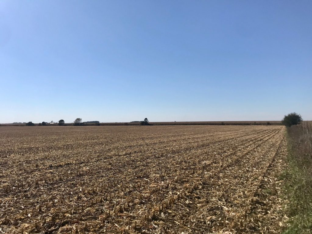 65+/- Acres Floyd County, IA