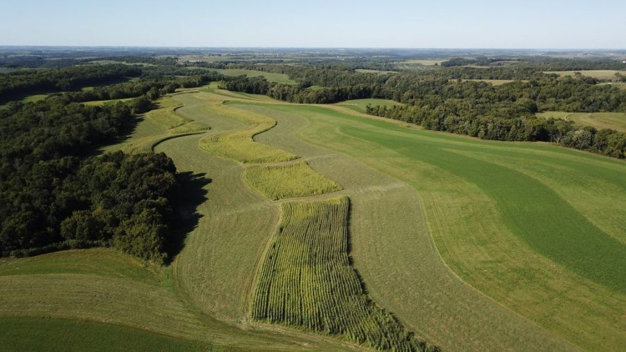 263+/- Acres Allamakee County, IA - AUCTION