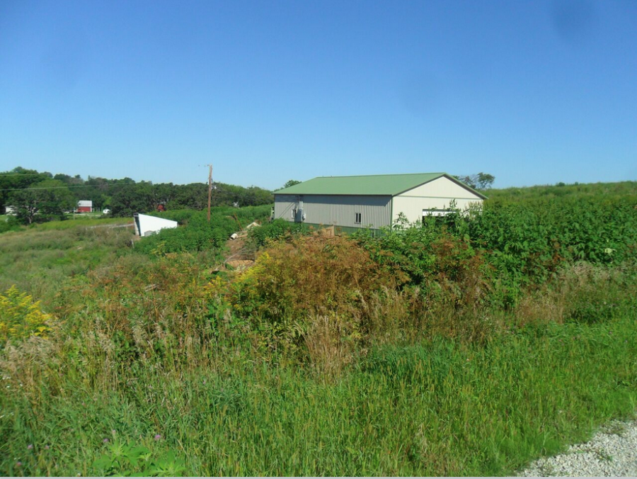 37+/- Acres Fillmore County, MN