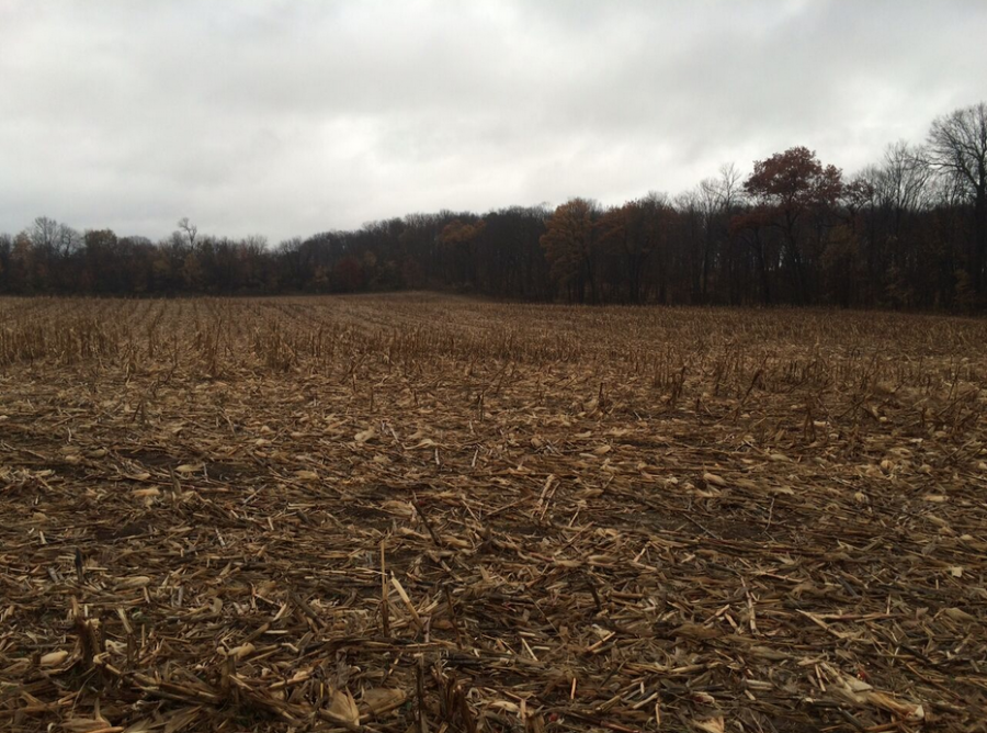 65+/- Acres Fillmore County, MN