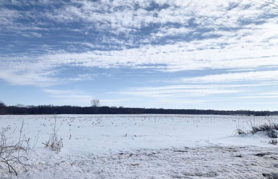 158+/- Acres Chickasaw County, IA - ONLINE AUCTION!