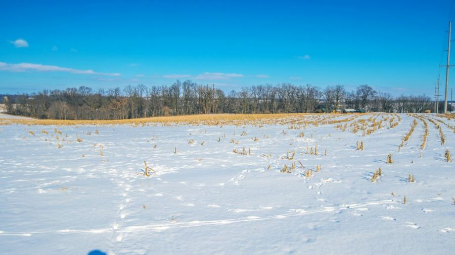 31.69+/- Acres Lafayette County, WI   AUCTION   Tract 1