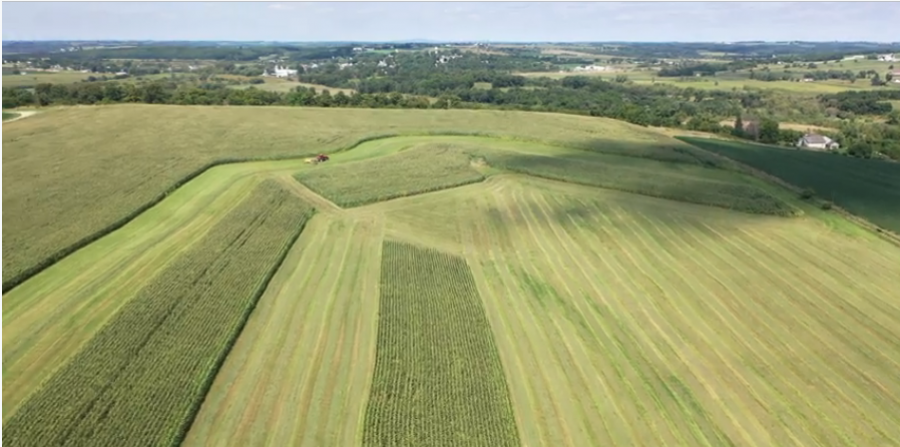 70.75+/- Acres Lafayette County, WI - AUCTION