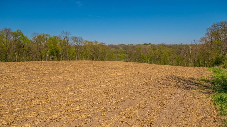 30+/- Acres Allamakee County, IA