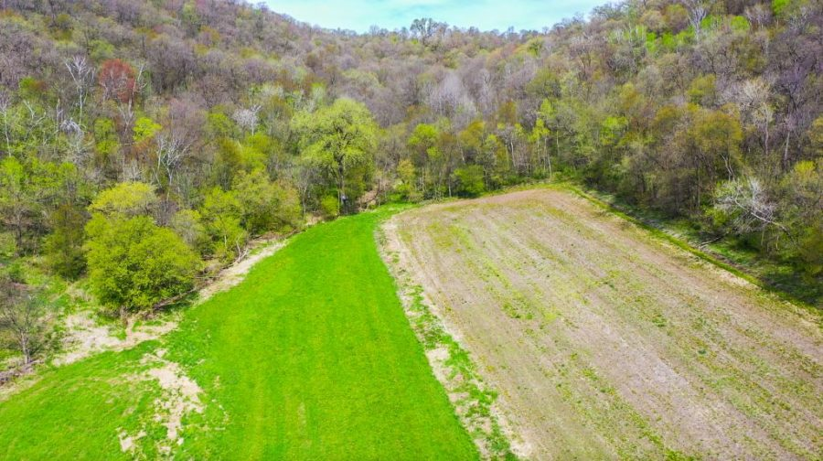 100.85+/- Acres Buffalo County, WI
