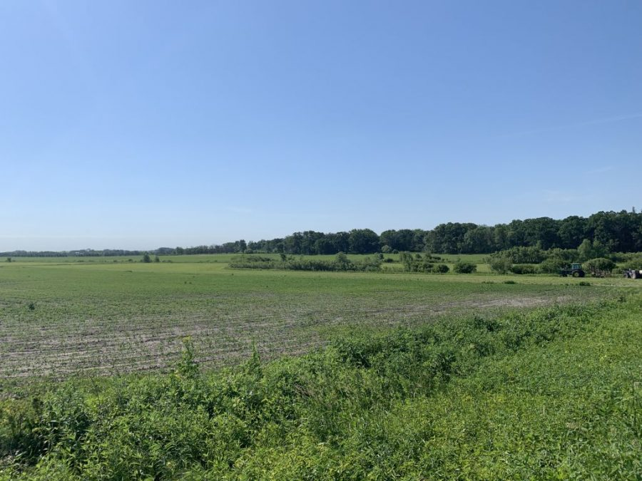 120+/- Acres Mower County, MN