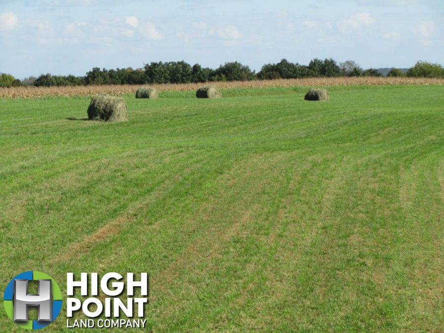 Hay-fields