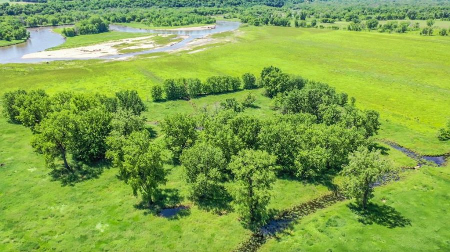 140+/- Acres Wabasha County, MN