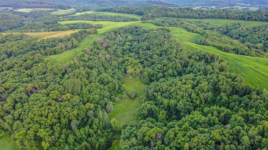 104.86+/- Acres Trempealeau County, WI