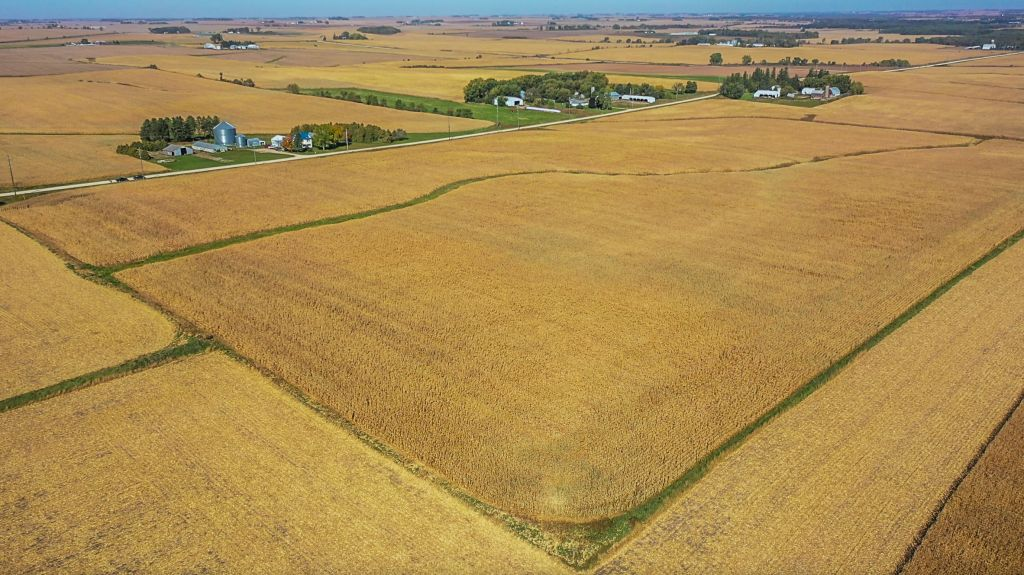 240+/- Acres Chickasaw County, IA - AUCTION