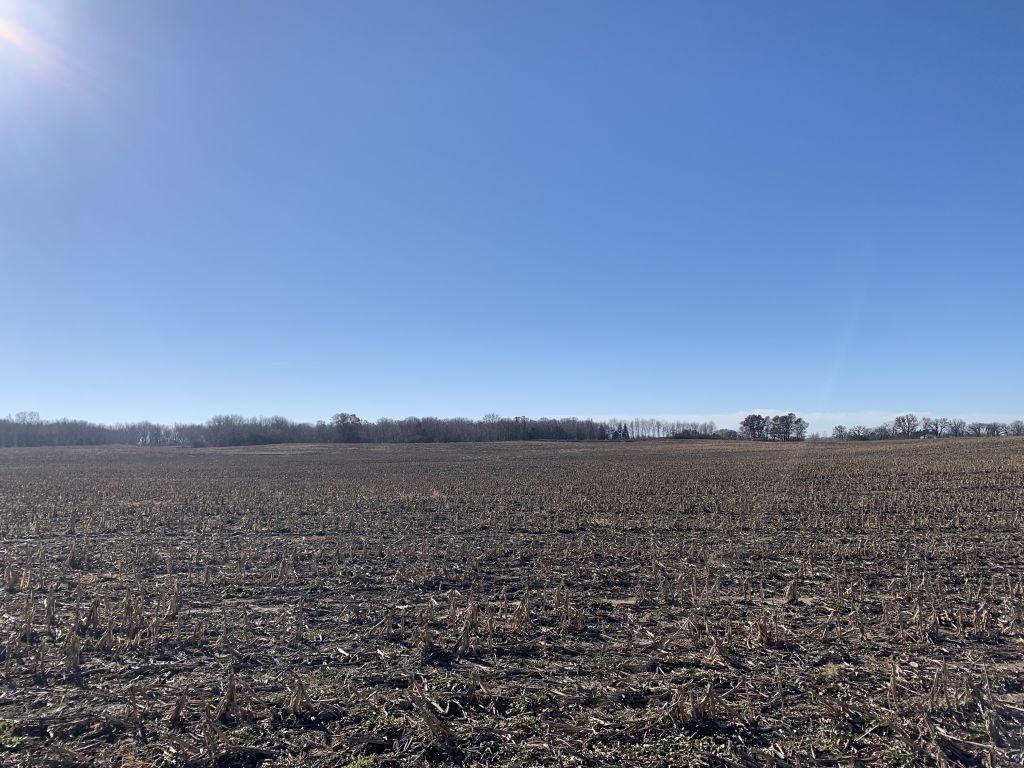 80+/- Acres Mower County, MN