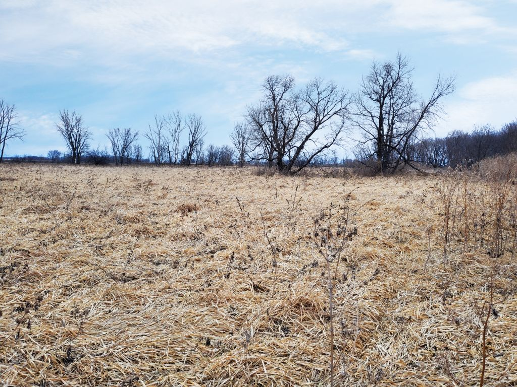 15.8+/- Acres Waseca County, MN