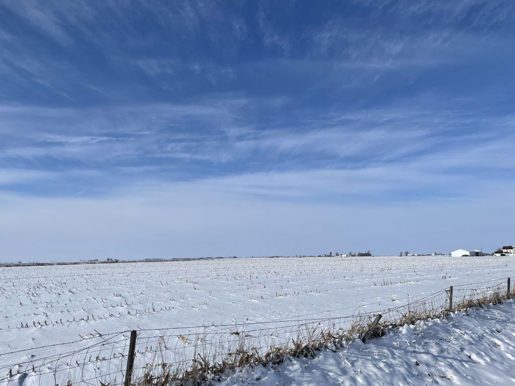 131.86+/- Acres Scott & Muscatine, Counties, IA