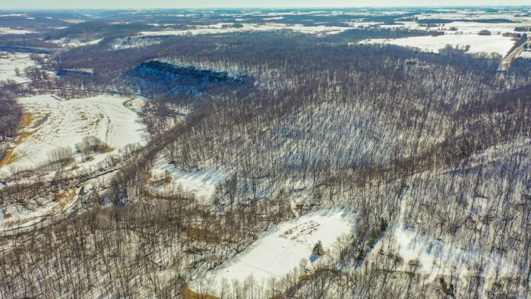 59+/- Acres Olmsted County, MN