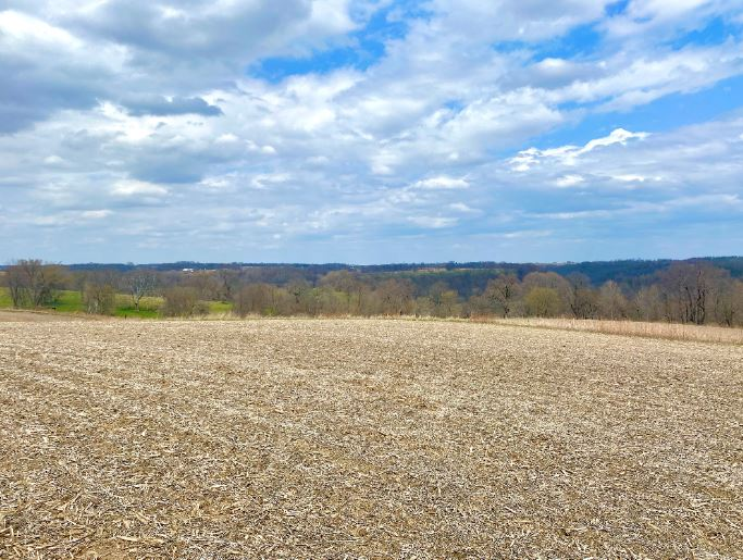 48.5+/- Acres Allamakee County, IA