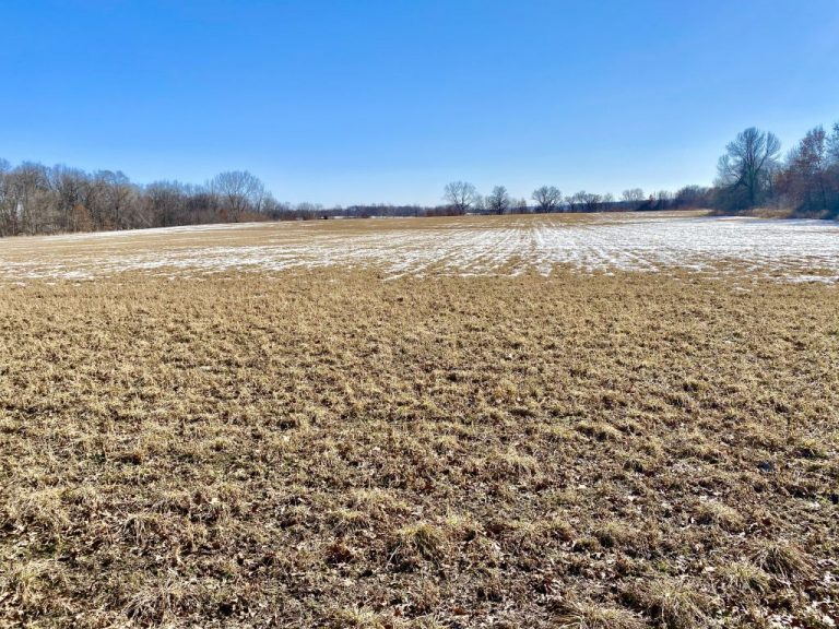 61+/- Acres Chickasaw County, IA