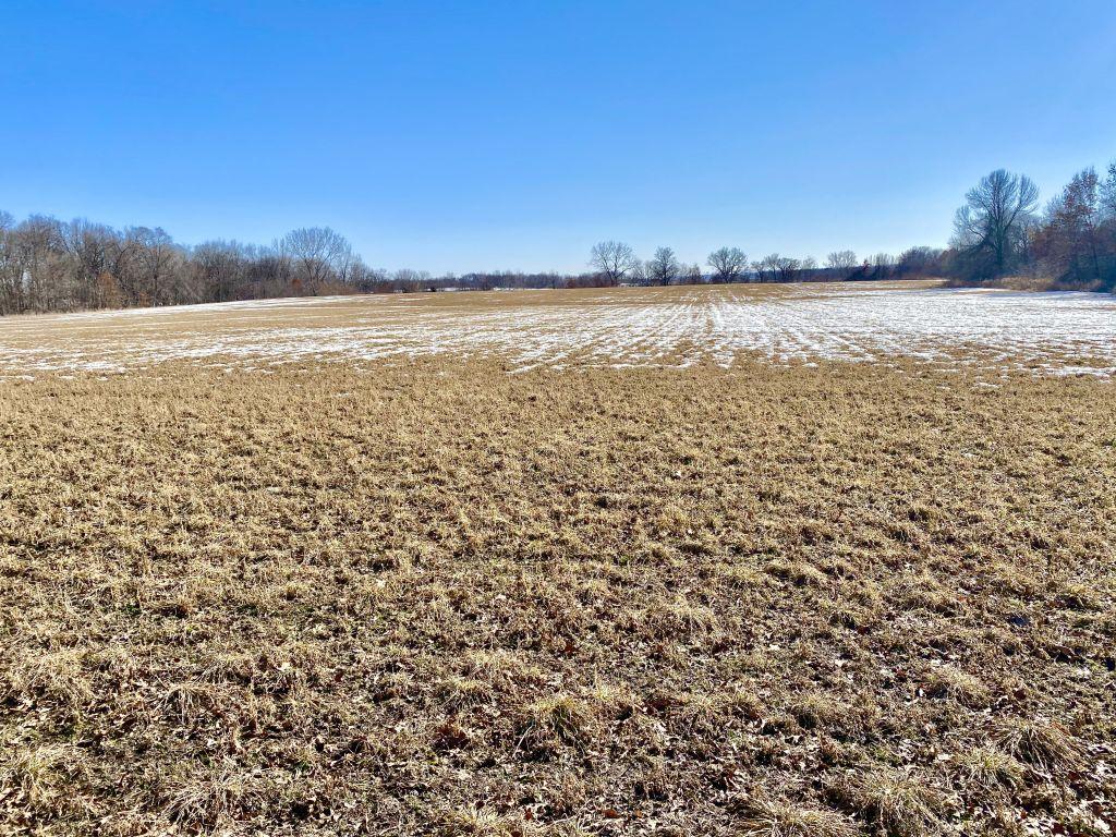 61+/- Acres Chickasaw County, IA
