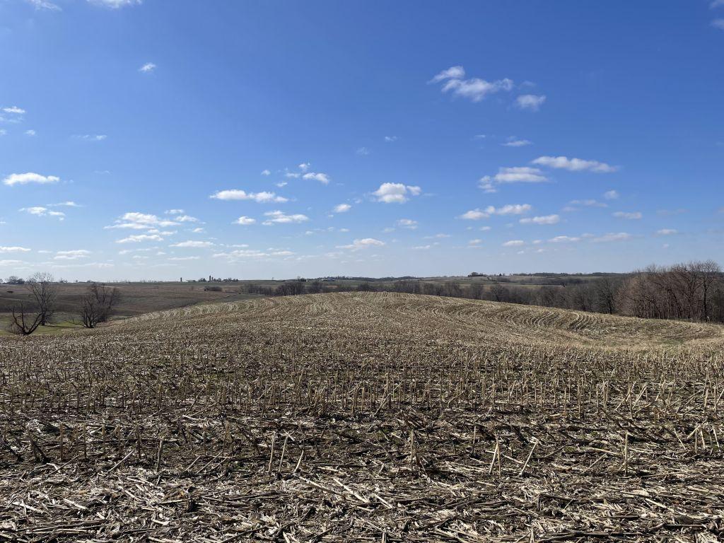 128.45+/- Acres Jackson County, IA