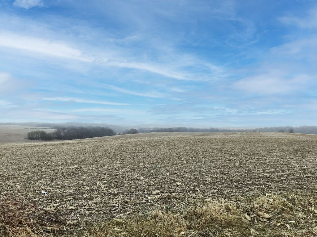 73.13+/- Acres Olmsted County, MN